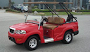 LS Sport Custom Golf Cart